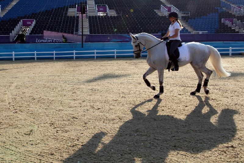 Equitazione-Vittoria-Panizzon.jpg