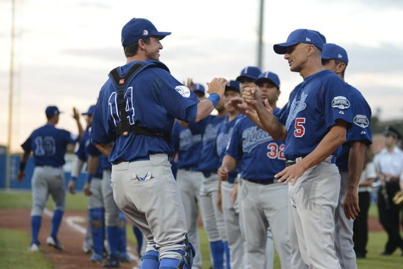 Baseball_italia_Fibs.jpg
