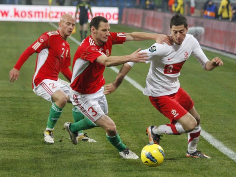 Robert_Lewandowski-calcio-foto-wikipedia-libera.jpg