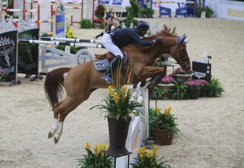 Equitazione-Luca-Moneta-Horsemanship-FB.jpg