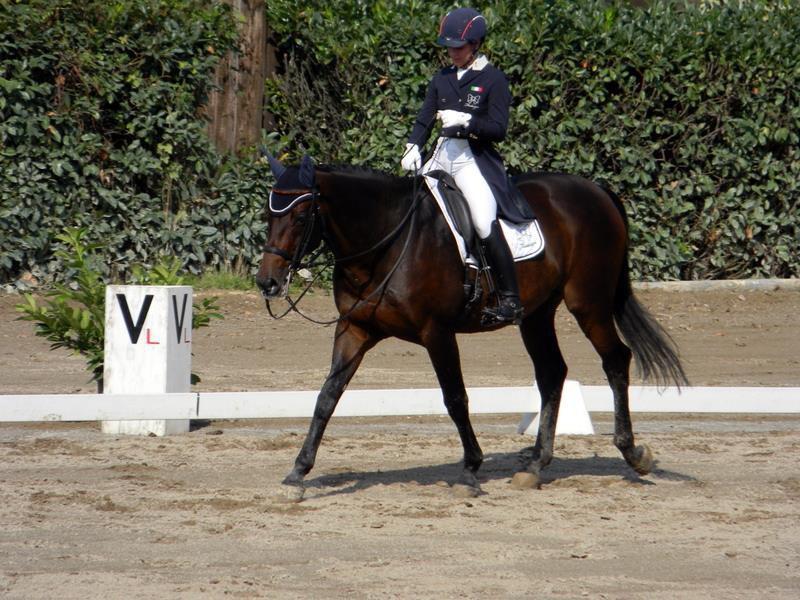 Equitazione-Micol-Rustignoli.jpg