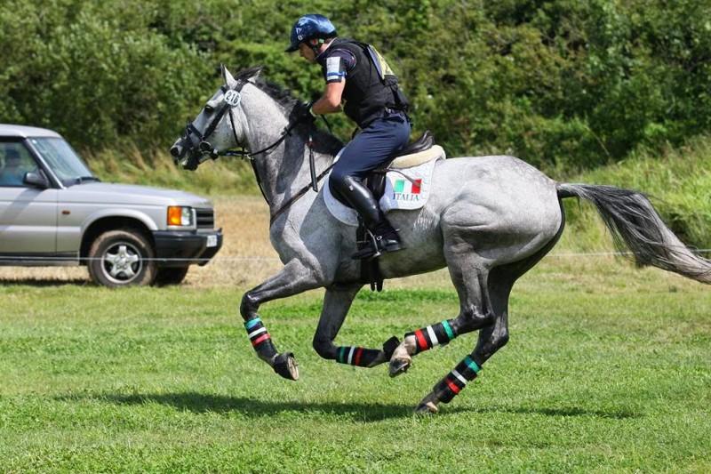 Equitazione-Paolo-Belvederesi.jpg
