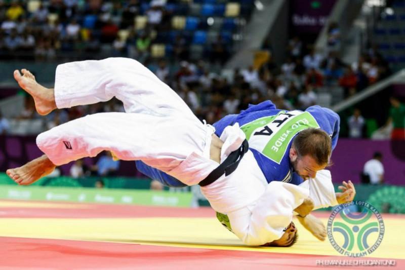Judo-Elio-Verde-Fijlkam.jpg