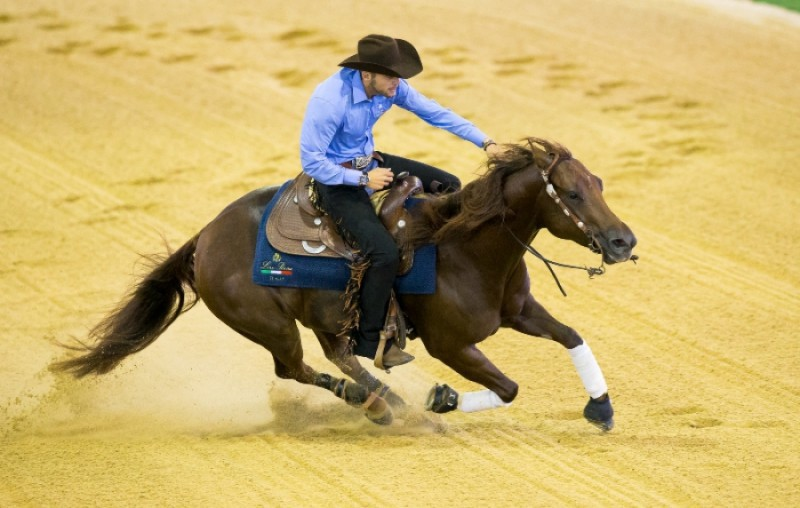 Equitazione-Giovanni-Masi-de-Vargas-FISE.jpg