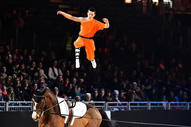 Equitazione-volteggio-Jannis-Drewell.jpg