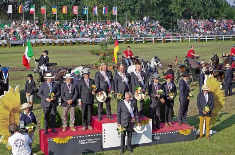 Equitazione-Attacchi-Pariglie-FISE.jpg