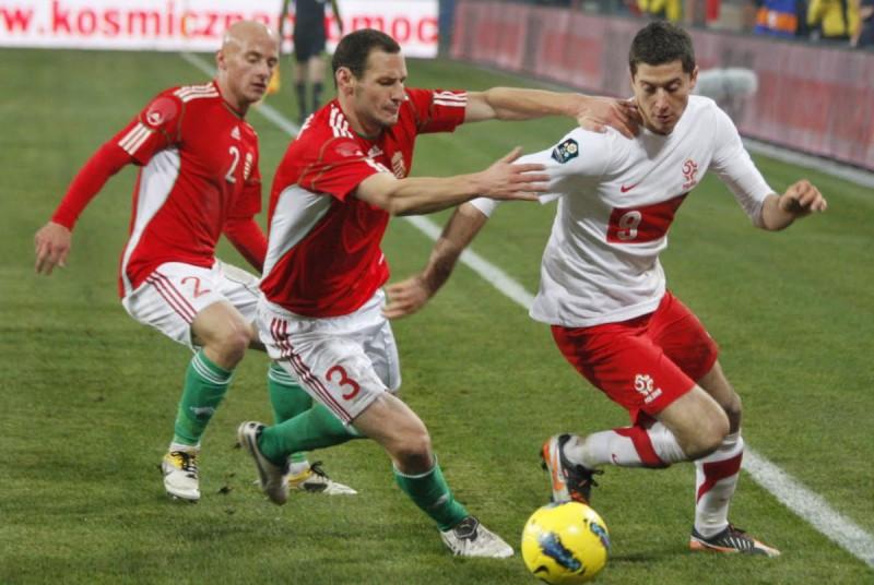 Robert-Lewandowski-calcio-foto-free-wiki-e1444590059395.jpg
