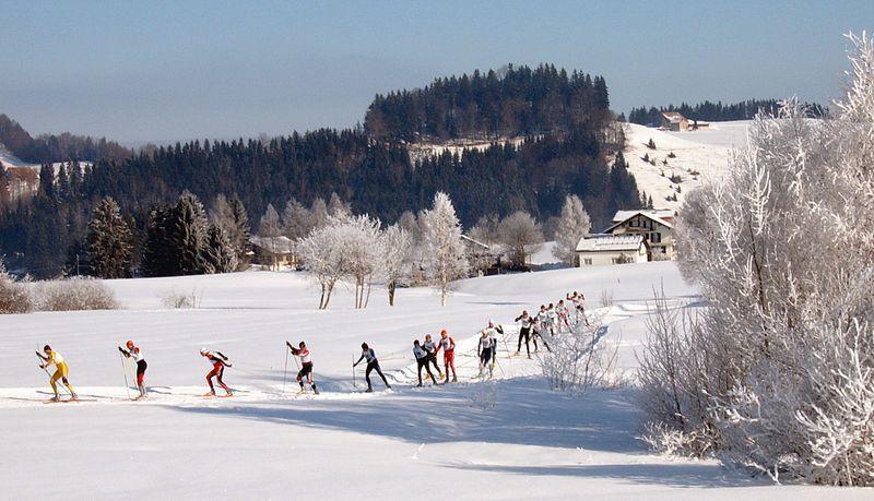 800px-Cross-country_skiing_Schwedentritt.jpg