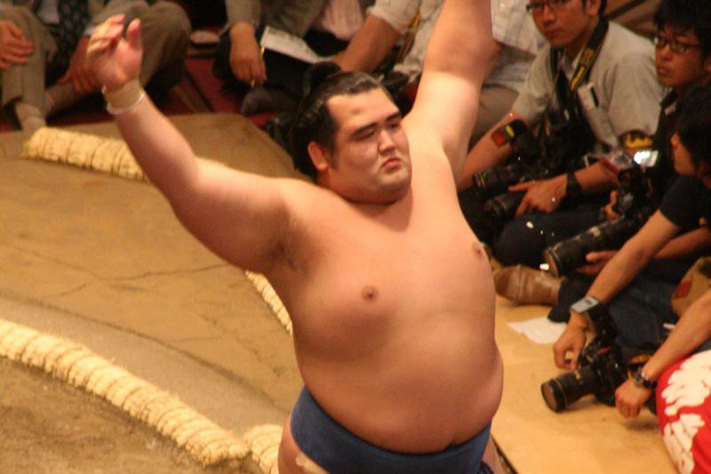 Sumo-Kotoshōgiku.png