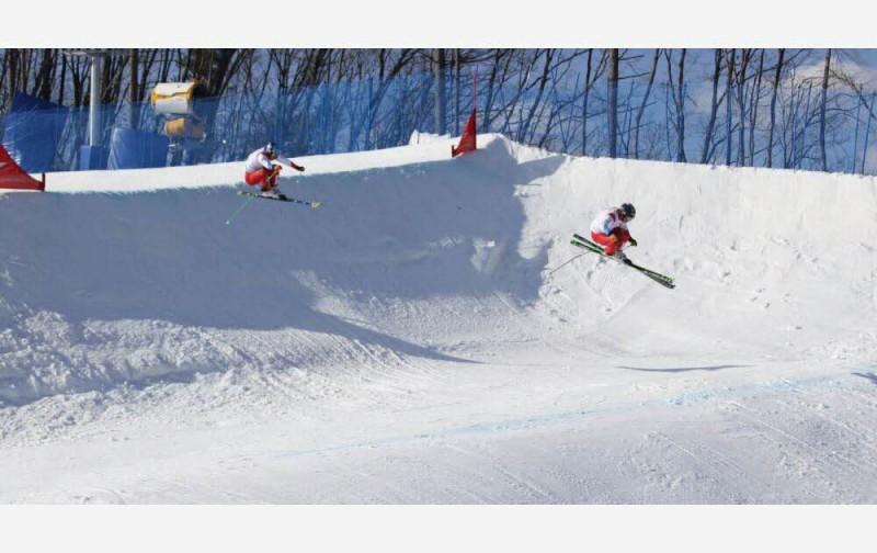Skicross-Pyeongchang-FIS.jpg