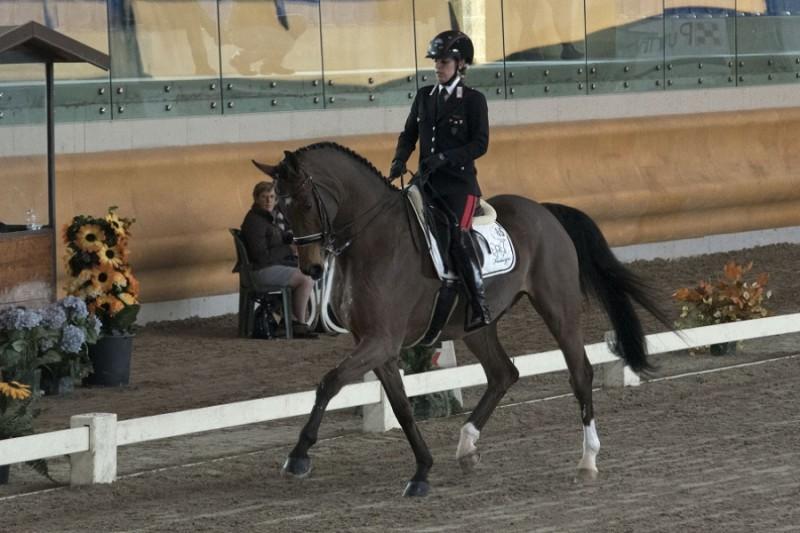 Equitazione-Valentina-Truppa-FISE-Equestra-Group-Racca.jpg