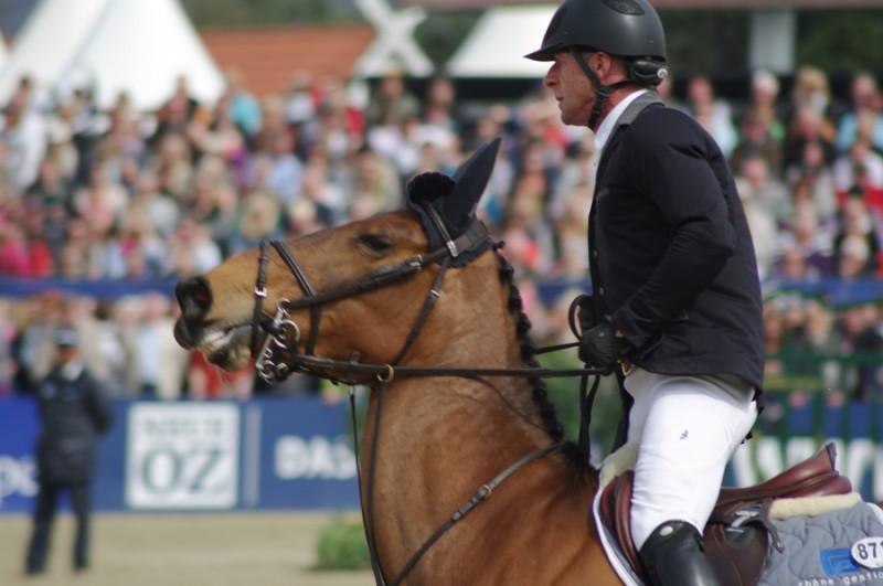 Equitazione-Paul-Estermann.jpg