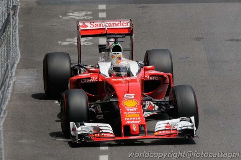 Vettel-6-Foto-Cattagni.jpg