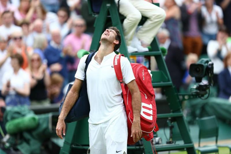 tennis-juan-martin-del-potro-twitter-wimbledon.jpg