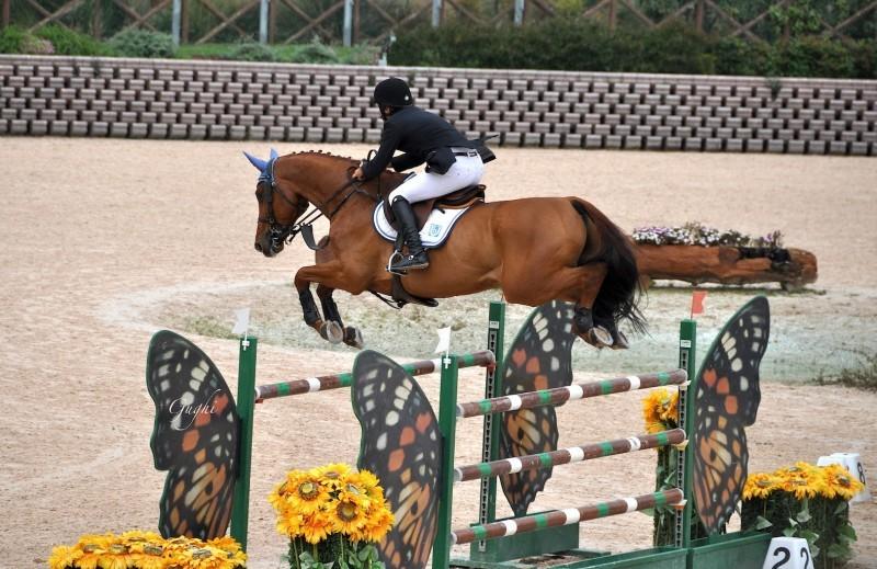 Equitazione-Riccardo-Pisani.jpg