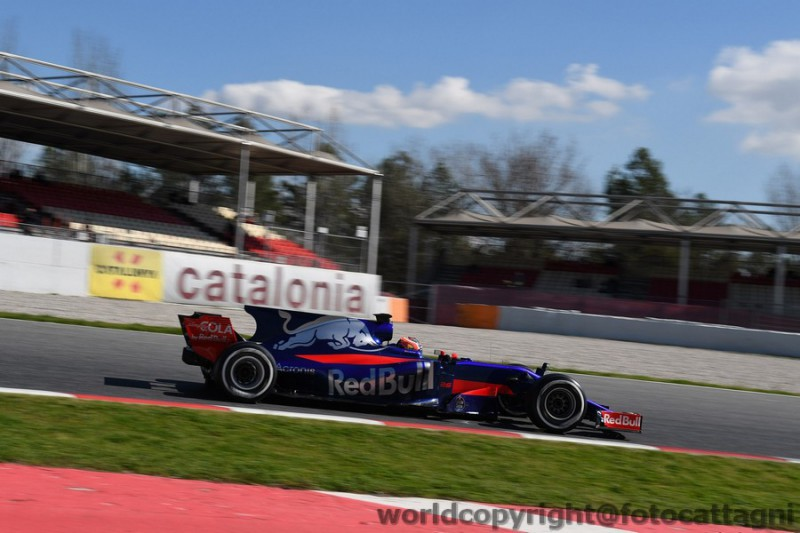 Sainz-Toro-Rosso-FotoCattagni.jpg