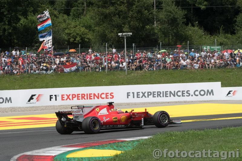 Vettel-2-Fotocattagni.jpg