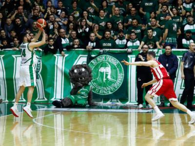 Basket, Champions League 2018-19: Venezia, Avellino e Virtus Bologna direttamente alla fase a gironi, Cantù parte dal primo preliminare