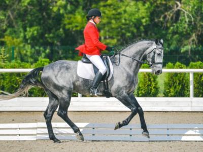 Equitazione, Nations Cup Dressage Compiegne 2021: Danimarca in testa dopo il Grand Prix