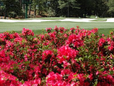 Golf, Masters Tournament 2020: Tiger Woods difende il titolo, Francesco Molinari ci riprova