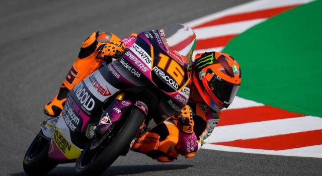 Moto3, risultati warm-up GP Olanda: Migno precede Antonelli. Suzuki positivo al Coronavirus