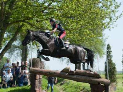 Equitazione, Olimpiadi Tokyo: l'Italia del completo è settima dopo il cross country. Panizzon 25ma nell'individuale